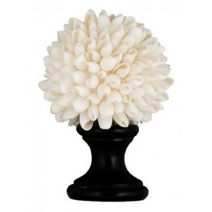 White Angel Wing Shell Finial